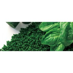 CHOPPED SPINACH 2.5KG