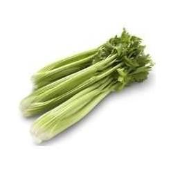 Celery (bunch)