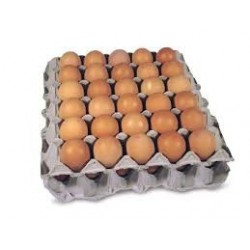 FILLER EGGS 15 DOZEN