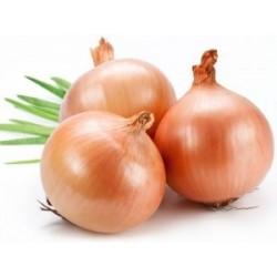 Onions Brown, 2kg prepack