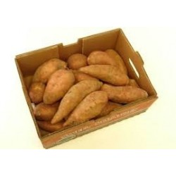 Potatoes - Sweet, BOX 18kg