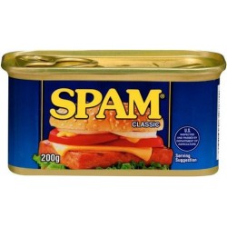 SPAM SPICED HAM 200GM
