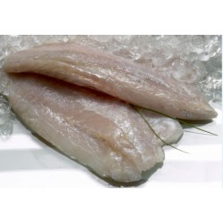 BARRAMUNDI FILLETS 200/300 5KG