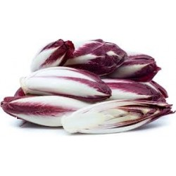 LETTUCE WITLOFF RED 200GM PUNNET (2PIECES)