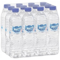 SPRING WATER 12X600ML