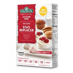 NO EGG EGG REPLACER 200GM