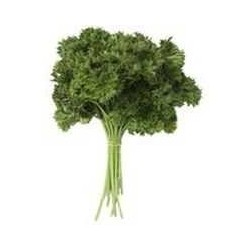 Parsley - Curly Leaf (bunch)