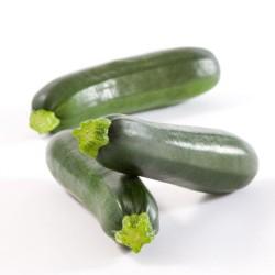 Zucchini Green, BOX 10kg