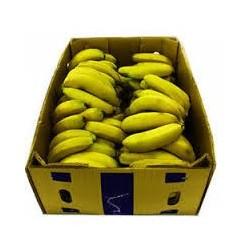 Bananas XL, BOX 15kg