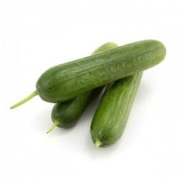 Cucumbers - Lebanese 1KG