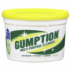 PASTE GUMPTION TUB 500GM