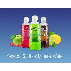 APPLE RASPBERRY MINERAL WATER 350ML